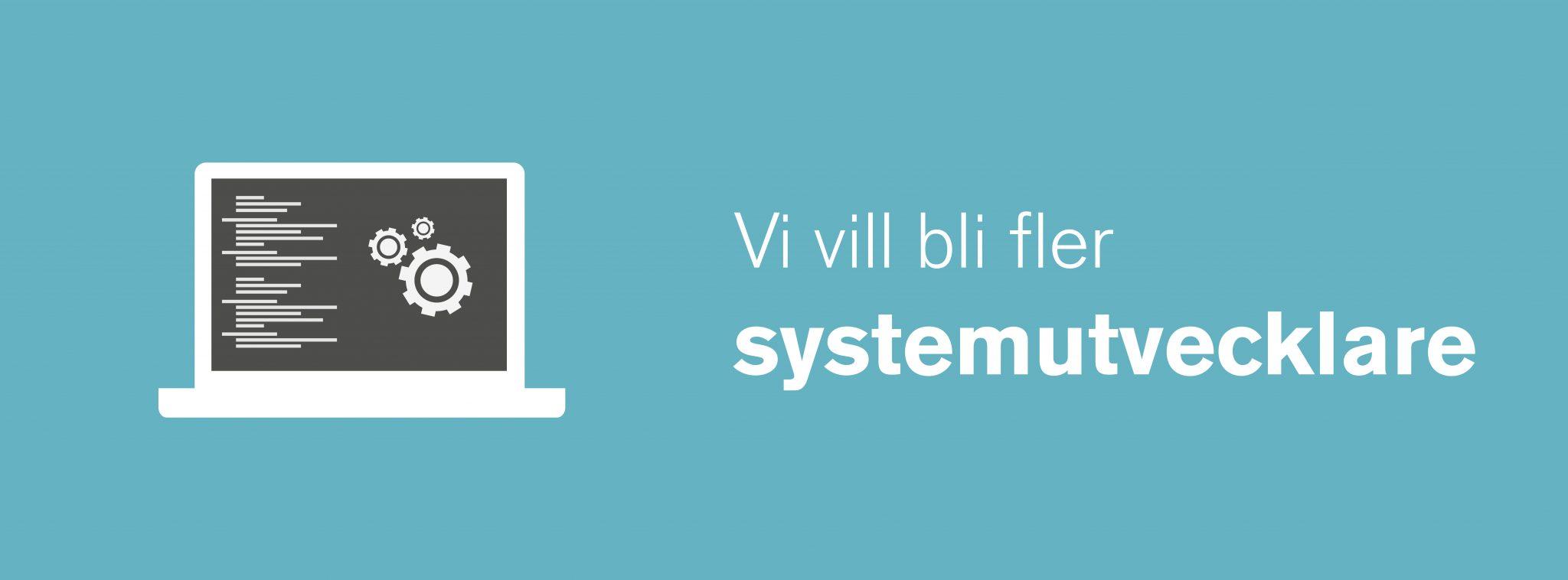 Systemutvecklare